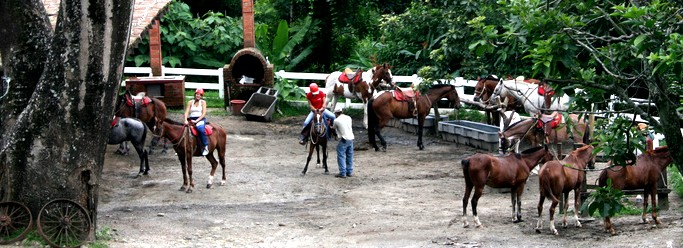 Playa Negra Guanacaste Costa Rica Horse Tours